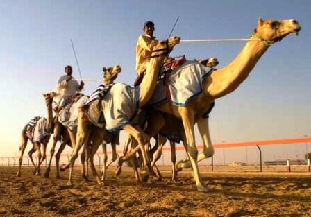 места для отдыха в Эмиратах