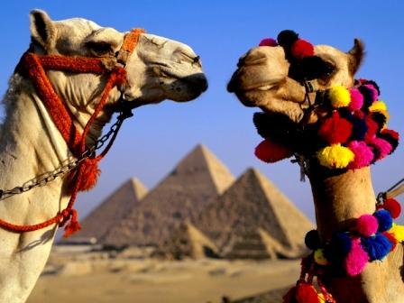 Поездка в Египет зимой