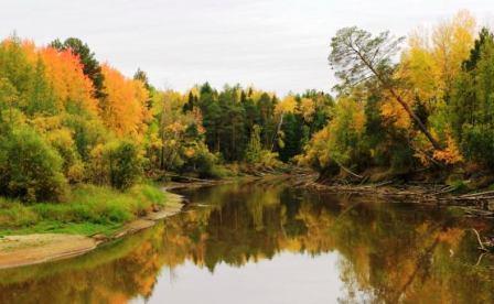 таежные реки