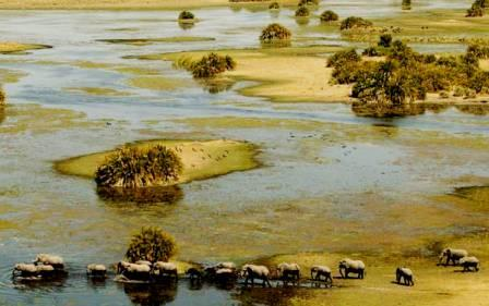 страна замбия
